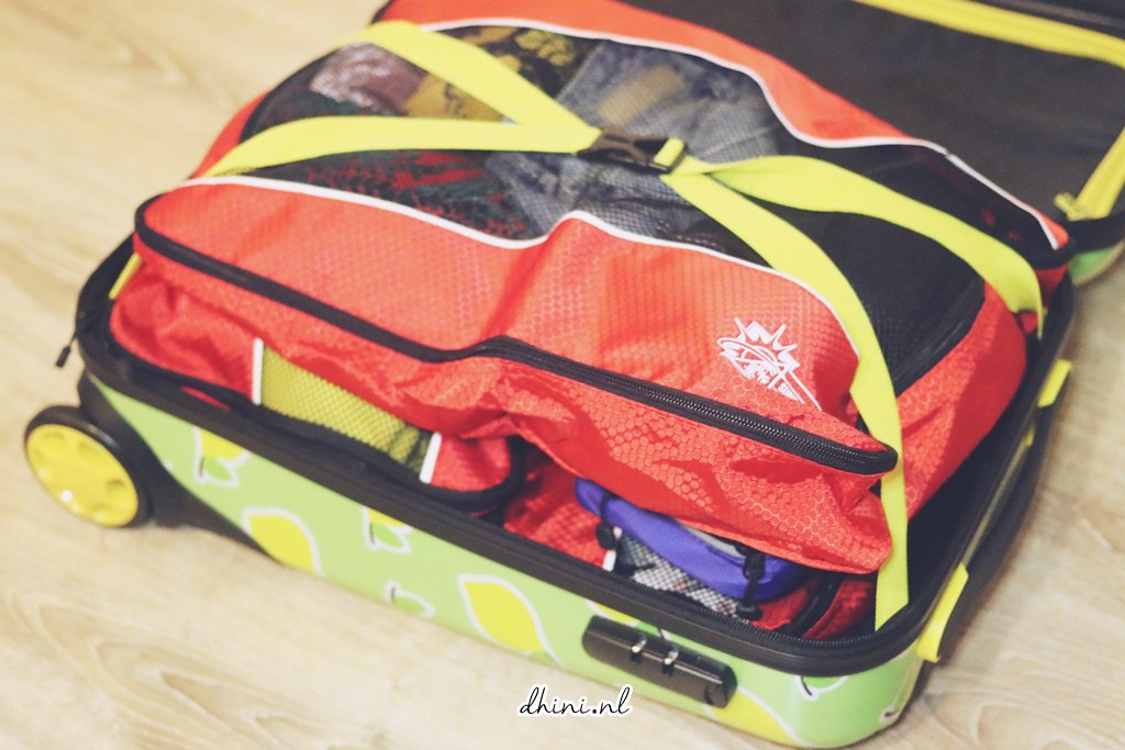 Sunflake travel organizer bags