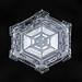 Snowflake-a-Day No. 10 by Don Komarechka