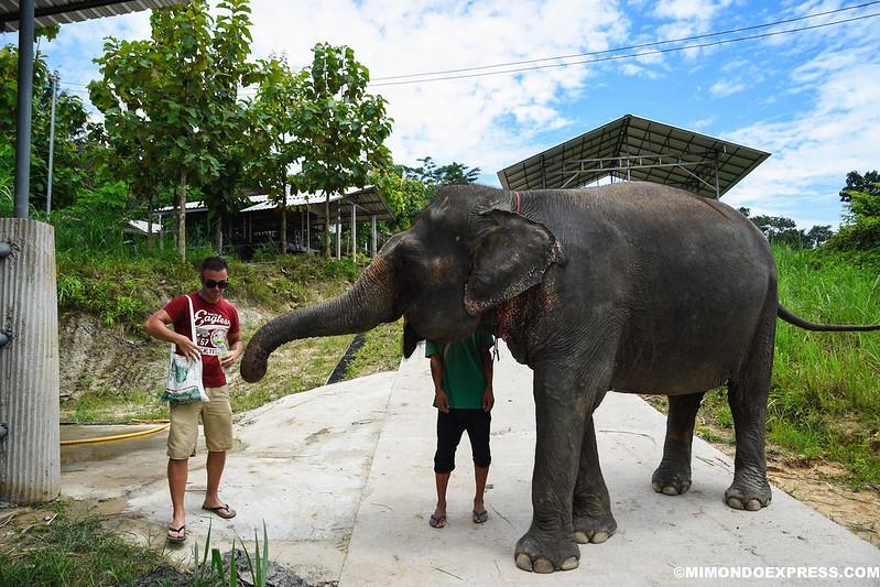 Qué ver en Tailandia en 20 días