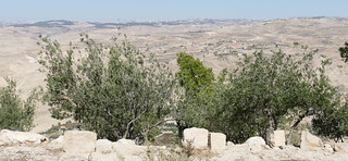 View of the Promised Land from Mt Nebo (26)