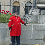 Chelsea Pensioner and proud Prestonian!