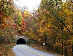 Tunnel on North Carolina's Blue Ridge Parkway. Original image from Carol M. Highsmith's America, Library of Congress collection. Digitally enhanced by rawpixel.