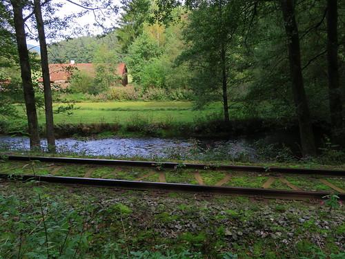 20170928 01 387 ostbay Bach Eisenbahngleise Wiese