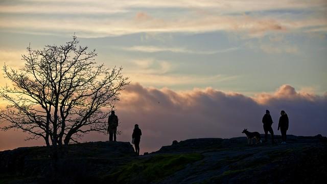 Watching the Sun Go, Canon EOS 5D MARK IV, Sigma 150-600mm f/5-6.3 DG OS HSM | C