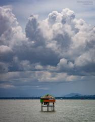 Boat to Koh Samui