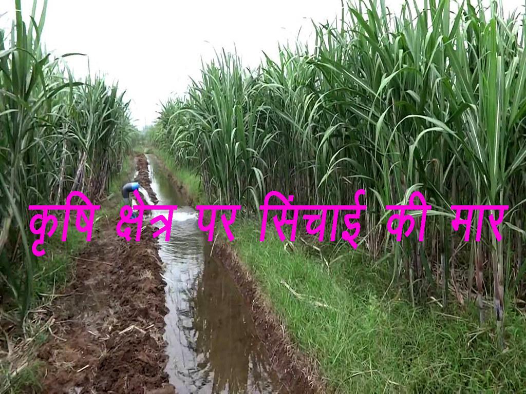 कृषि क्षेत्र पर सिंचाई की मार