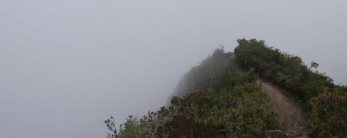 Machu Pichu Peru-20.jpg