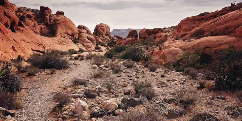Une explosion dans le désert aide à comprendre Vénus