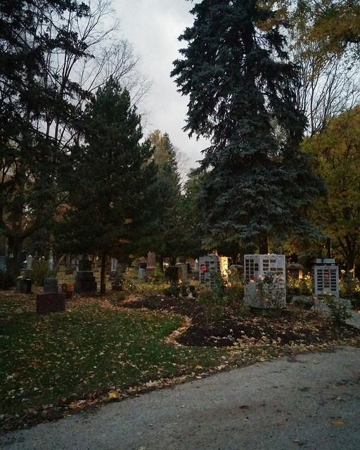 Dipping into the Necropolis (4) #toronto #cabbagetown #torontonecropolis #cemetery #fall #autumn #yellow #leaves #evening