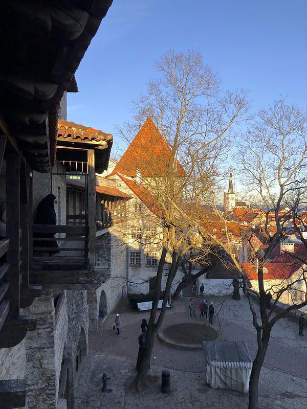 Tallinnan tornit ja kaupunginmuuri