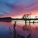 Sunrise at Lake Wanaka by witajny