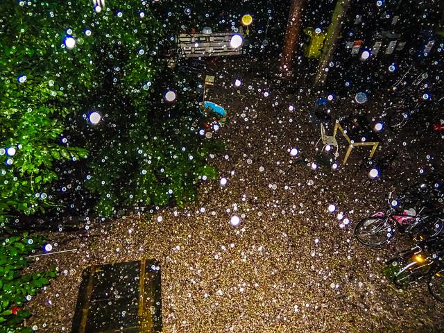 rain2, Sony DSC-HX10V