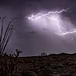 12. Oktoober 2018 - 23:51 - I decided to repost this shot from last month, but with more muted processing.  Nice lightning bolts looking north from the top of Sweeney Pass in the southern portion of Anza-Borrego Desert State Park. This bolt was VERY close by - almost too close for comfort. I heard and felt the loud BOOM of thunder almost immediately after seeing the flash of the bolt.   In order to shoot this shot, I placed my camera rig under a folding table to shield it from the pouring rain. Luckily the rain was coming straight down and not blowing sideways - otherwise I'd be making an insurance claim on my gear. Haha. While the weather station on my camper registered only 0.04' of rain up here, it all came down with about 30 minutes or so. Among the commotion, I didn't have much time to carefully frame my shot before shooting this frame as part of a timelapse - I made sure to get the ocotillo and cholla in the fame to the right, then had to start shooting and seek shelter under the canopy of my trailer.  On the night of October 12, 2018 I got to experience the most epic thunderstorm I've ever seen in southern California. I know I may have said something similar a week or two ago, but this one tops ALL thunderstorms I've experienced out here.