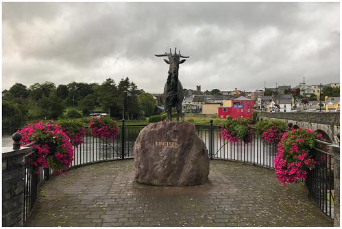King Puck in Killorglin, Kerry, Ireland ...