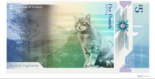 5-Pound-Note-Scotland-Scottish-Wildcat design concept