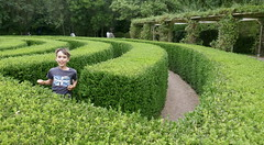 Jasper In The Maze - Photo of Vervant