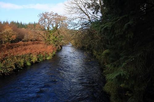 IMG_3828     Lyre River Walk Loop.  10th November 2018.