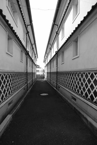Saijo, Hiroshima pref. on 25-11-2018 (10)