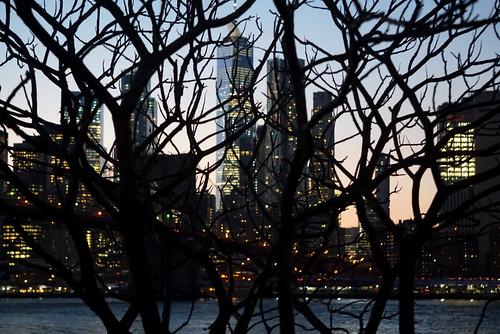 evening Brooklyn Bridge Park