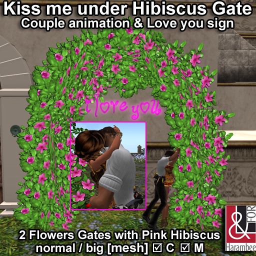 Kiss me under Hibiscus gate