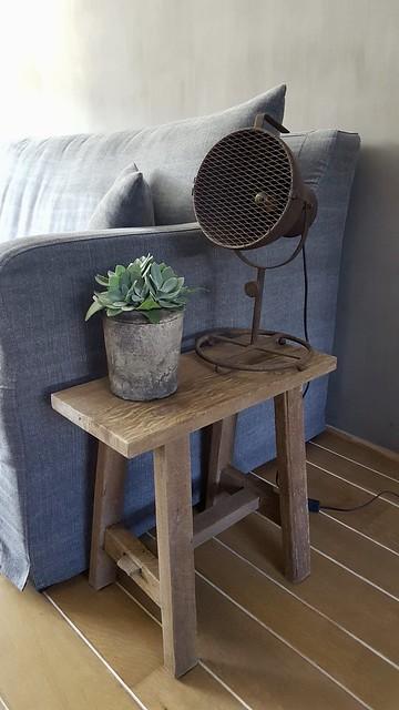 Krukje stoere lamp plant