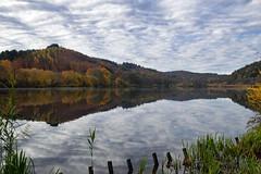 Reflets d'automne - Photo of Lichtenberg