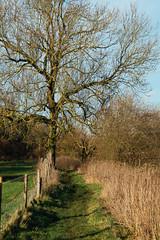 Wymondham