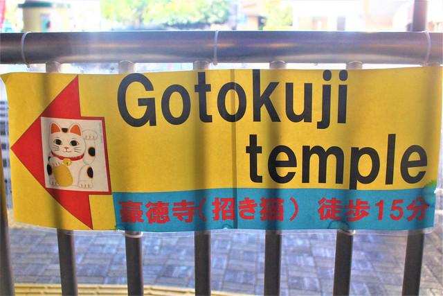 goutokuji001