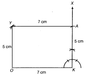 NCERT Solutions for Class 8 Maths Chapter 4 Practical Geometry 20