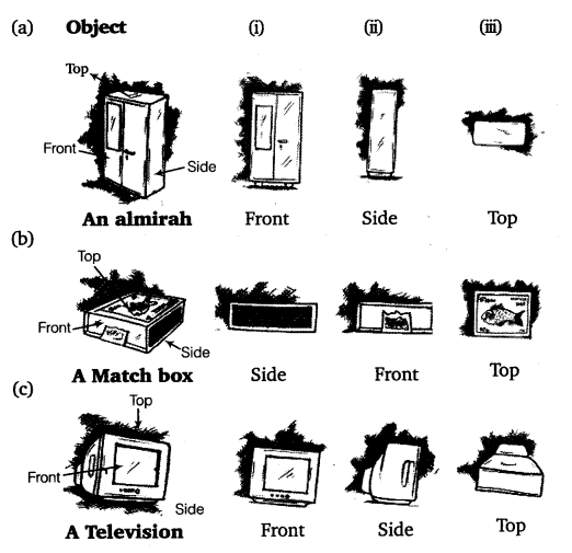 NCERT Solutions for Class 8 Maths Chapter 10 Visualising Solid Shapes 5