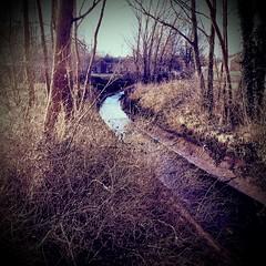 Chester-le-Street Riverside Park