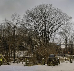 Riverview Park_20190118_02