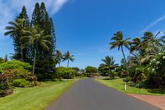 Princeville town Kauai Hawaii