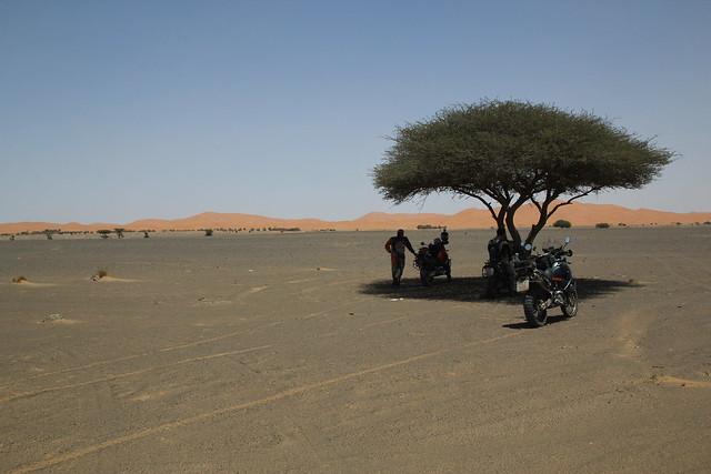 2014 05 25 - 06 19 marokko 09