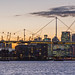 Sunset View Over Royal Victoria Dock
