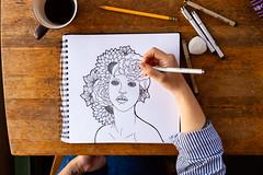 Cedar Sketching