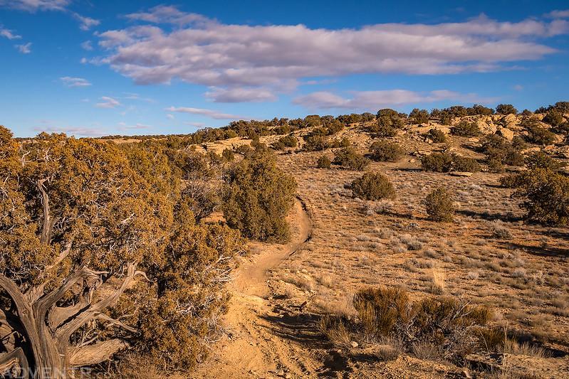 Mesa Top Trail