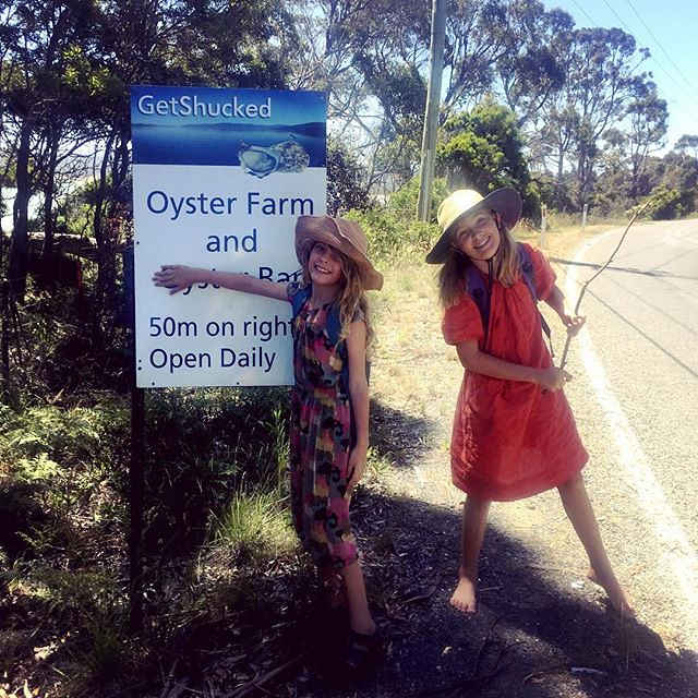 258/365 • we were shouted the best lunch ever at Get Shucked on Bruny Island - a dozen natural oysters from their own oyster farm with a bottle of the awesome @williesmithscider - perfection • . . #getshucked #tasmania #family #sisters #oysters #brunyisla