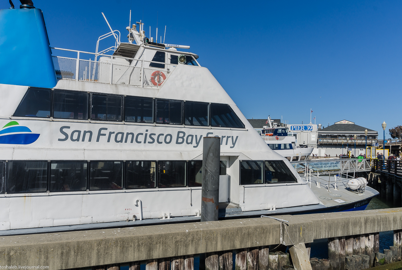 SFO_First Cruise-1