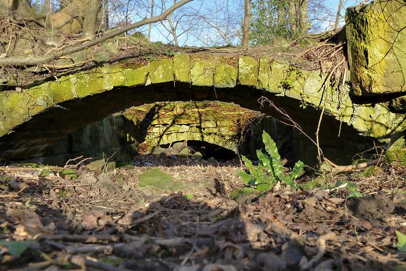 Buck Mill Ruins