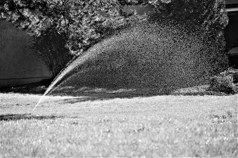 Hose Water 08.10 (3)