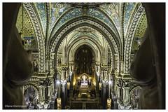 Lyon Visite nocturne de la basilique de Fourvière 8 Novembre 2018