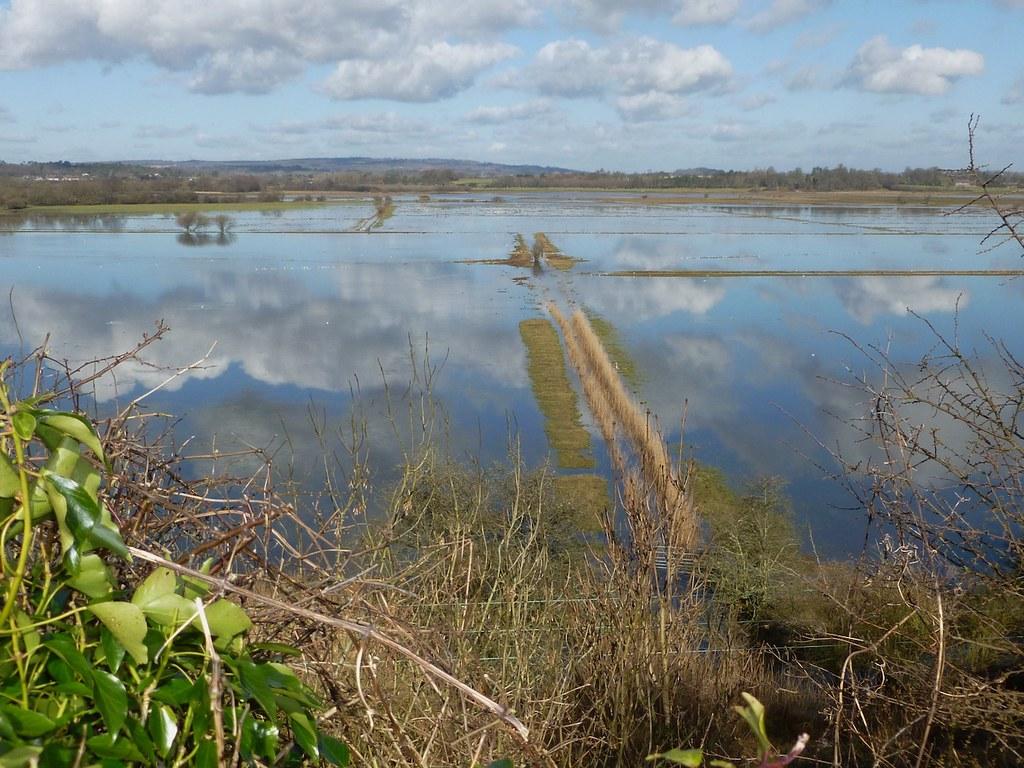 Flooded Wild Brooks (2014) Amberley Circular walk
