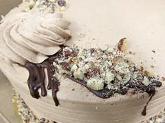 Chocolate Hazelnut Crunch cake, close up