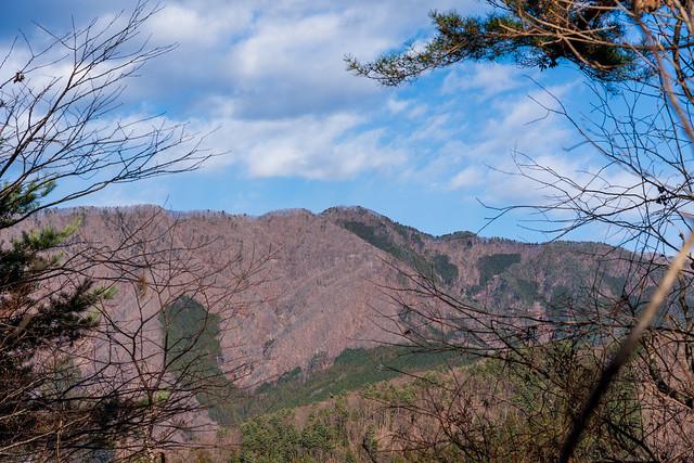 権現山を見上げる