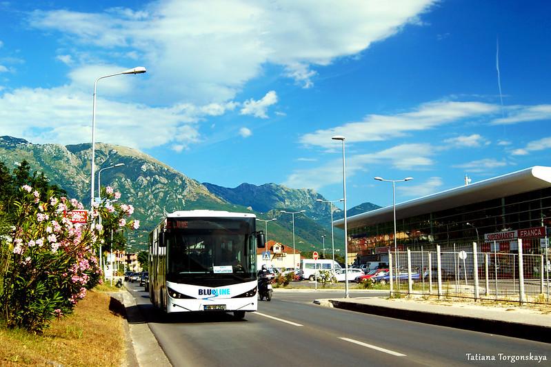 """Автобус """"Blue line"""" едет мимо автостанции Тивата"""