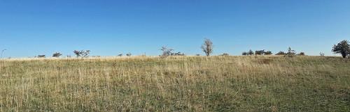 18705.Hügel vor'm Schlachtfeld