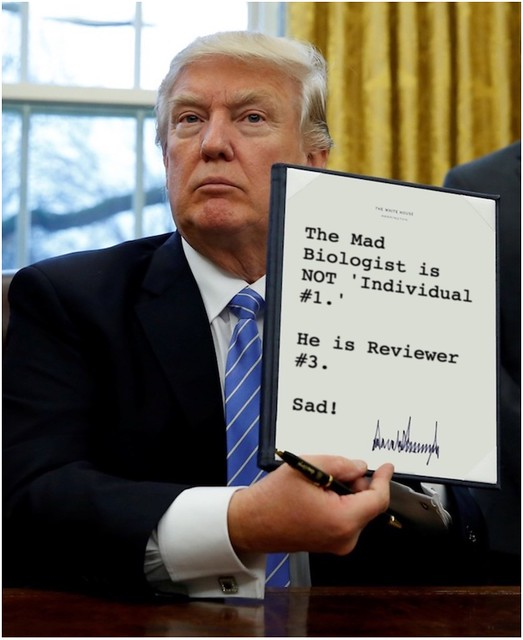Trump_individual1reviewer3