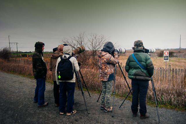 well endowed birders, Nikon D700, AF Zoom-Nikkor 24-50mm f/3.3-4.5