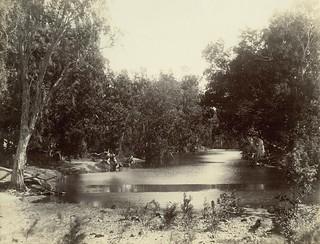 Longford Creek, between Proserpine and Bowen, 1921